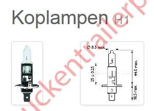 Halogeenlamp 12V H1 55watt